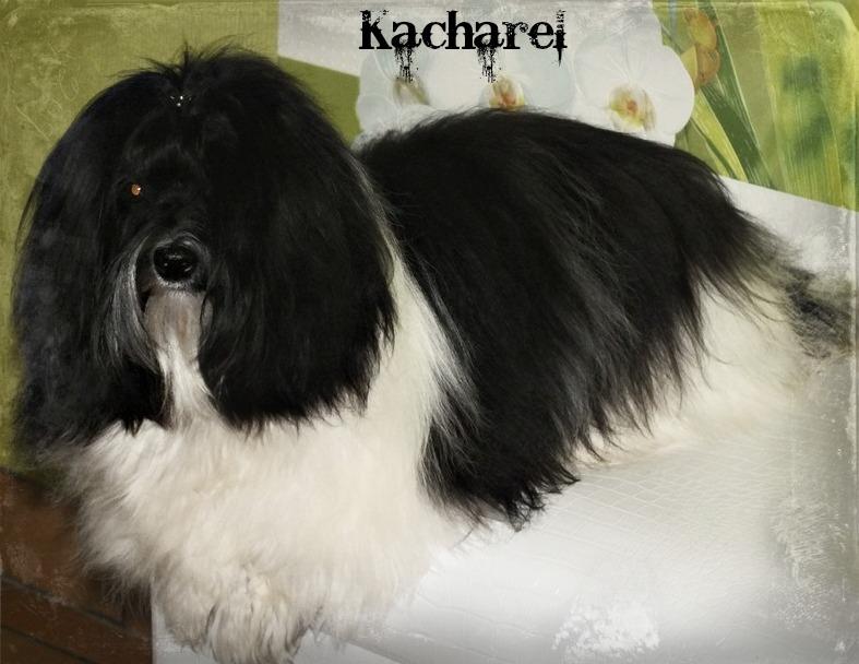 Kacharel 11 mois