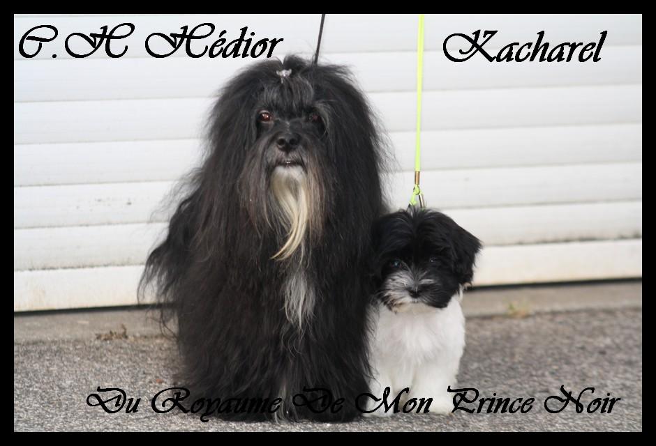 Dior et Kacharel