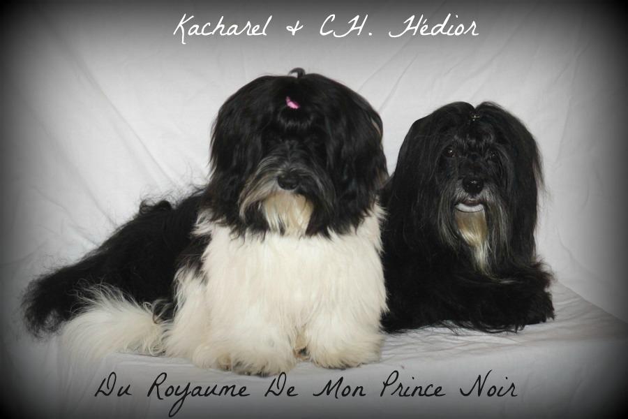 Dior et Kacharel juillet 2012
