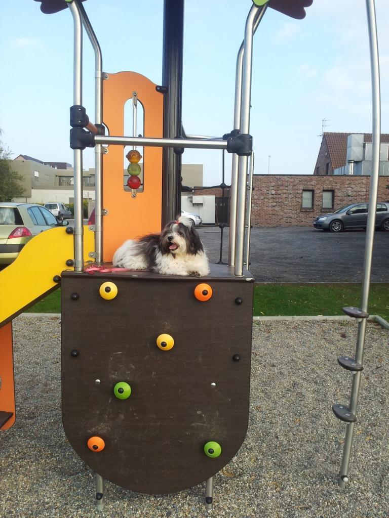 Joy au parc de jeu en Belgique
