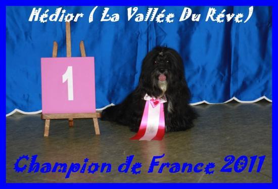 champion-2.jpg