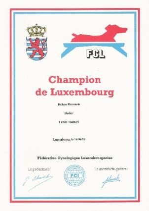 champion-lux.jpg